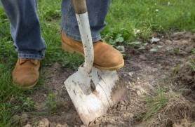 (FOTO) Descoperire PERICULOASĂ în timp ce prășeau în grădină. O familie din raionul Glodeni au găsit o grenadă