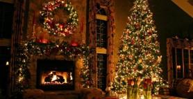 Ce semnificație are, de fapt, bradul de Crăciun. Tradiții și superstiții