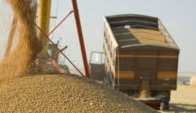 Ultima Oră // Președinția cere interzicerea exportului de grâu din rezervele de stat până pe 31 iunie