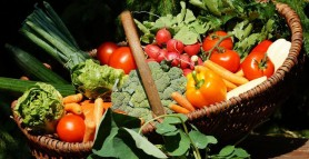 Ce legume se plantează în aprilie. Trucuri și sfaturi prețioase