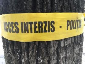 Descoperire MACABRĂ. Trupul neînsuflețit al unei adolescente din raionul Fălești găsit într-o fâșie forestieră