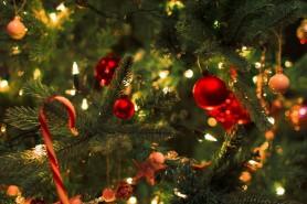 Cele mai frumoase imagini și videoclipuri de Crăciun
